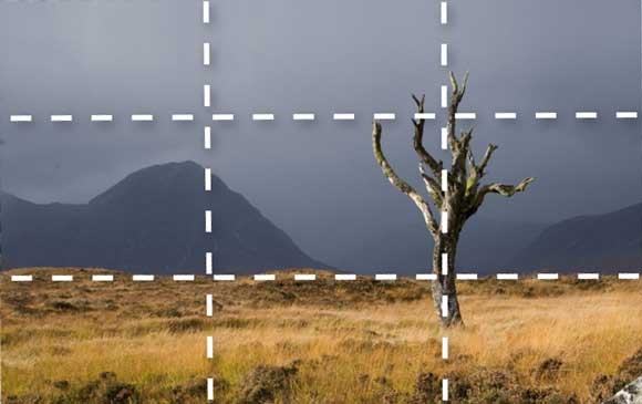 Understanding-the-Rule-of-Thirds-Why-it-works-2